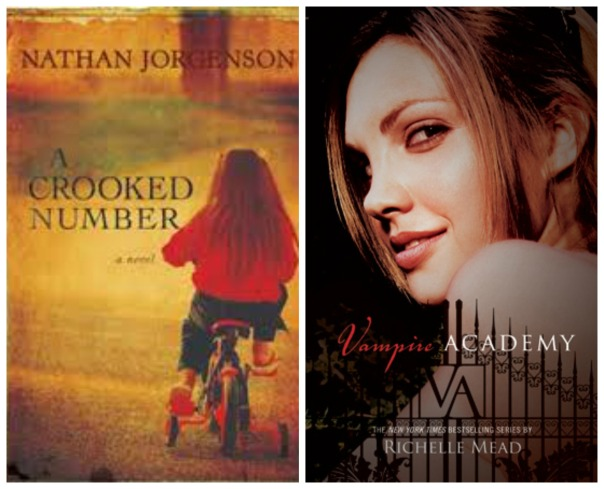 Faces on covers Sheila Book Journey A Crooked Number Nathan Jorgenson Vampire Academy Richelle Mead