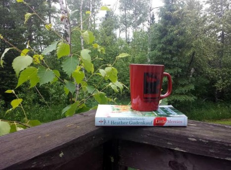 Sheila DeChantal, Book Journey, Summer Reading, Heather Gunderkauf, Little Mercies