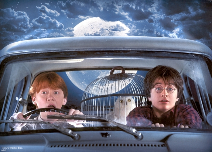 Ron and Harry in the Weasley Car