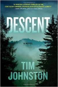 Descent, Tim Johnston, Book JOurney