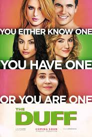 The DUFF, Book JOurney