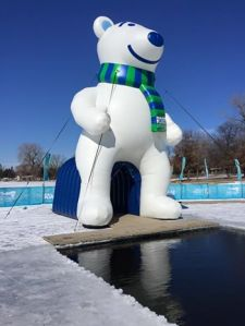 Polar Plunge Anoka MInnesota, Book Journey